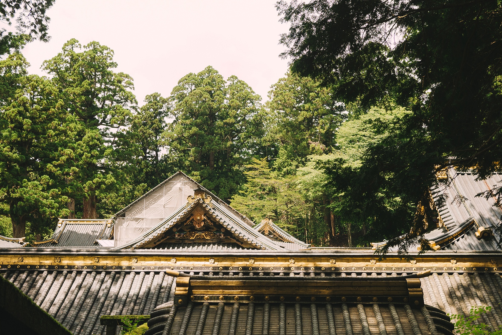 Nikko, temples and colors, feeding our creativity